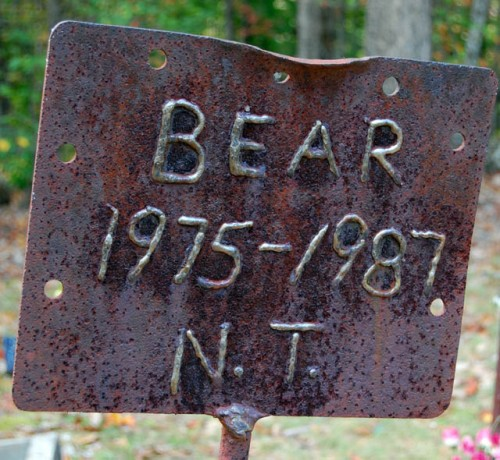 Bear 500x460 Coon Dog Graveyard, Alabama