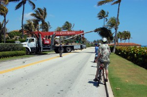 Truck with palm tree on it backs onto A1A in Palm Beach