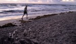 Runner on Lake Worth Beach 01 01 2011 by Lila SteinhoffIMG 1540 150x87 New Years Resolution Riders