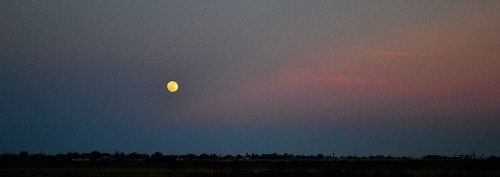 Moonrise over Belle Glade FL 01 08 2012 0886 500x177 Moonrise Over Belle Glade